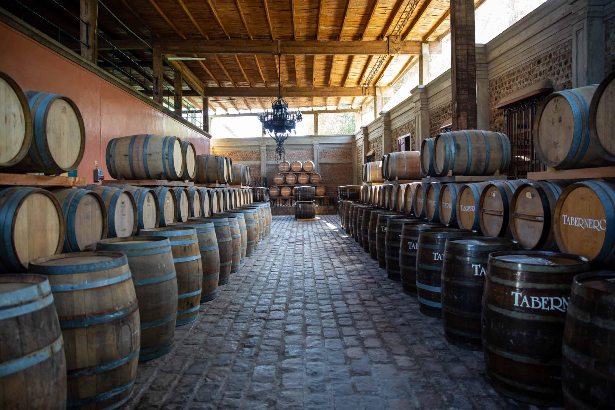 Instalaciones de la bodega Tacama